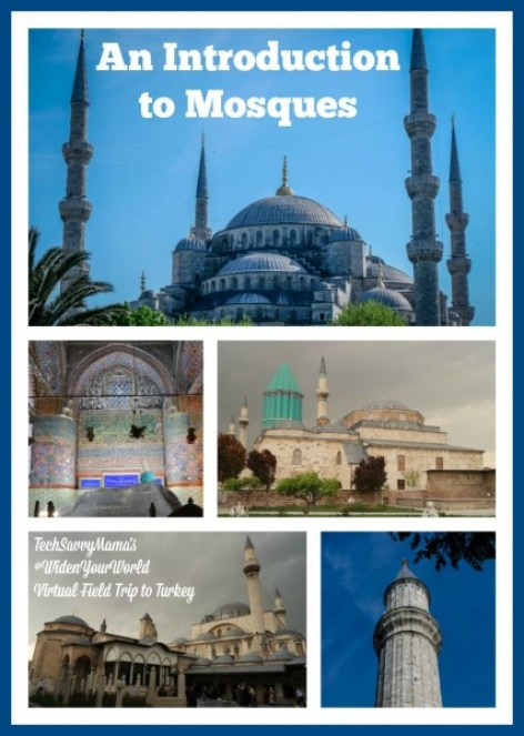 An Introduction to Mosques. What you need to know about mosques in Turkey on TechSavvyMama.com