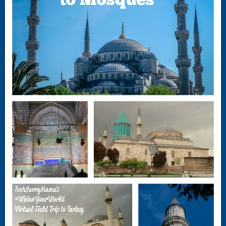 Virtual Field Trip Friday: An Introduction to Mosques in Turkey #WidenYourWorld