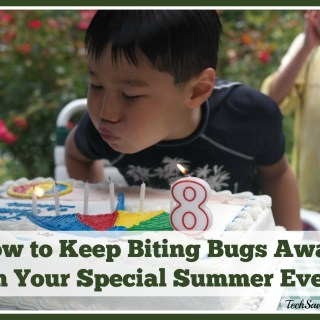 How to Keep Biting Bugs Away from Special Summer Events