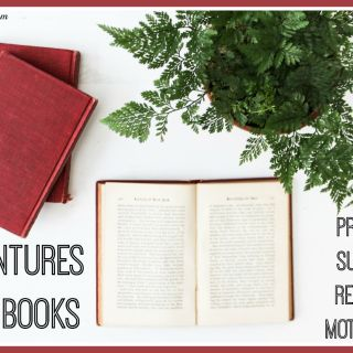 Adventures with Books Provide #SummerReading Motivation (w. giveaway)