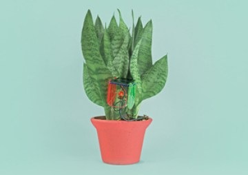 DIY Thirsty Plant Kit featured on TechSavvyMama.com's 2015 Best Best STEM Gifts for All Ages