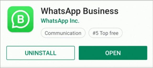 WhatsApp-Business-App