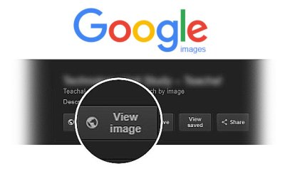 How to get view image button in google image search