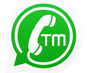 TMWhatsApp v7.40 apk(Anti-Ban Version) 2019