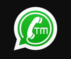 TM-WhatsApp Latest Version Download (With Inbuilt VPN)