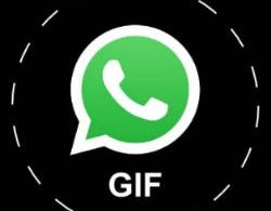 WhatsApp for iPhone gets GIF Library support