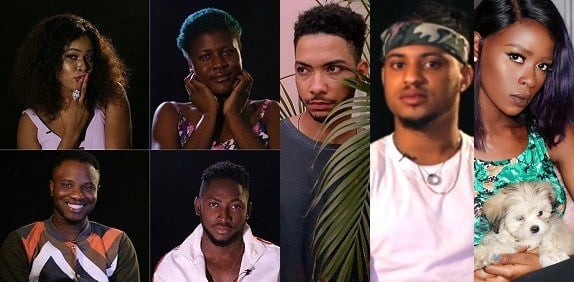 Big brother naija (BBNaija) 2018 contestants