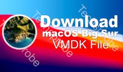 macOS Big Sur VMware & VirtualBox (VMDK)