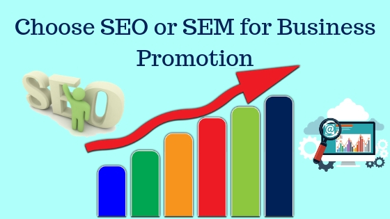 Choose SEO or SEM for Business Promotion