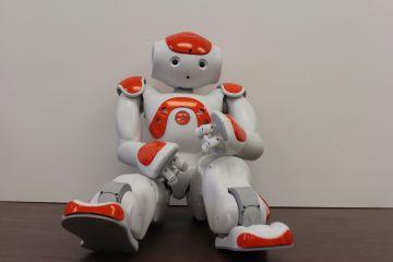 Google in Robotics