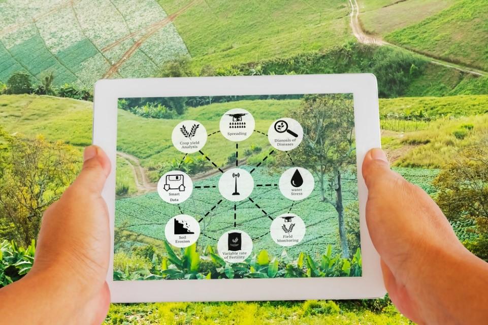 Is India Ready for Full-Scale Agri-Entrepreneurship 2