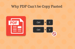 Why PDF Can't be Copy Pasted