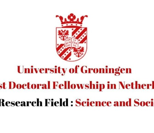 Postdoc Fellowship in University of Groningen