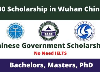 200 Chinese Government Scholarship in Wuhan