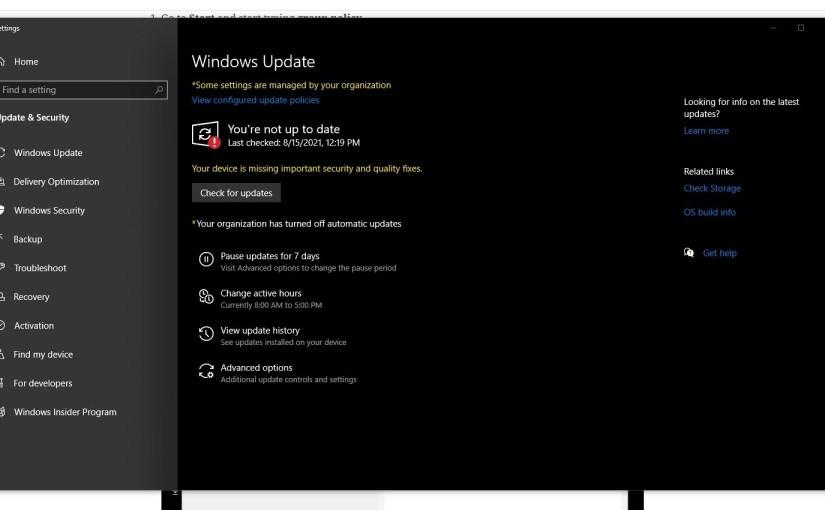 How to disable Windows Updates in middle of the night