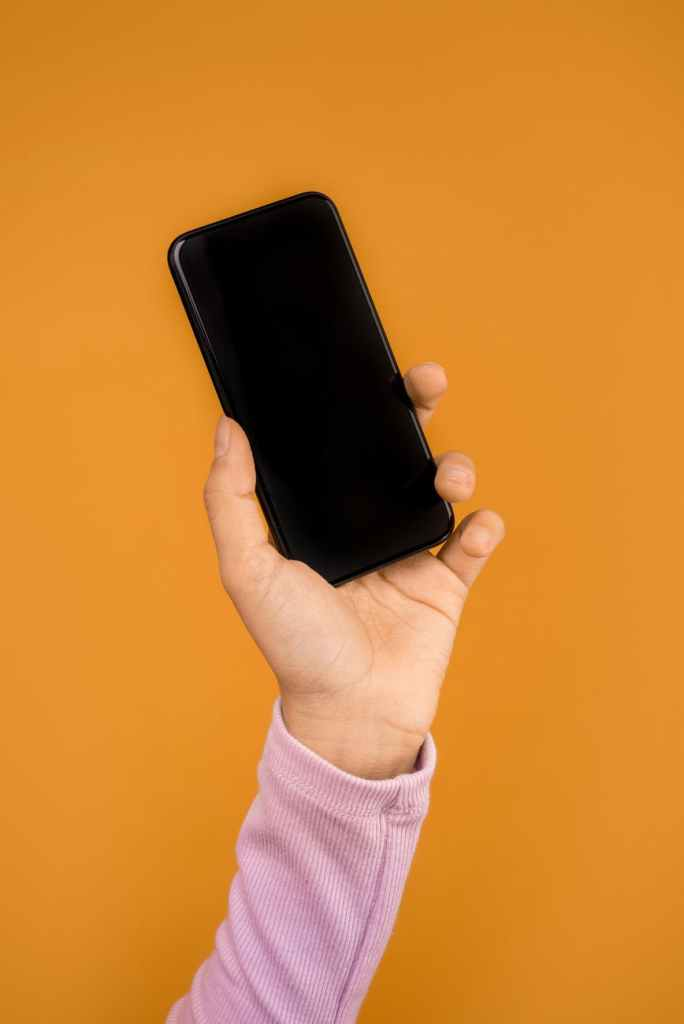 person holding a cellular phone