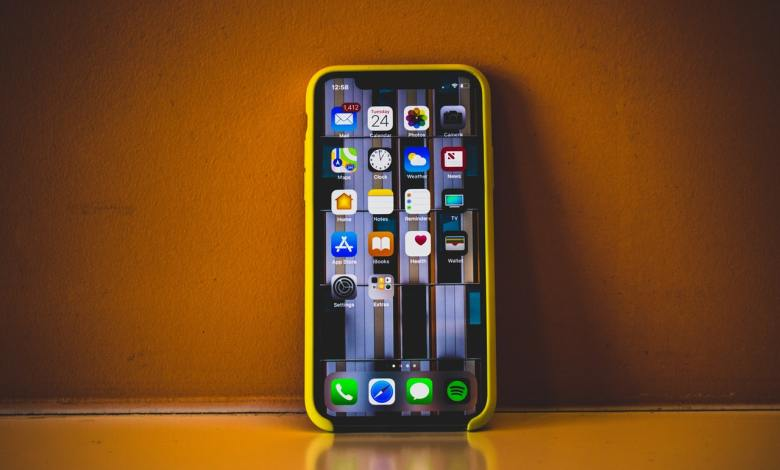 iPhone X with case