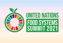 UN Food Systems Summit