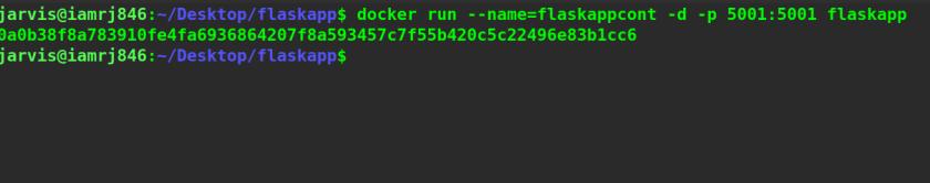 Running the Docker Image
