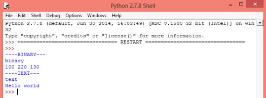 Sending binary and textual data to a websocket echo server, using Python
