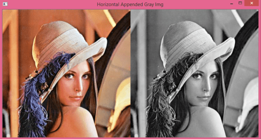 Gray image appended horizontally to a colored image.