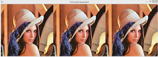 Horizontally appended images.