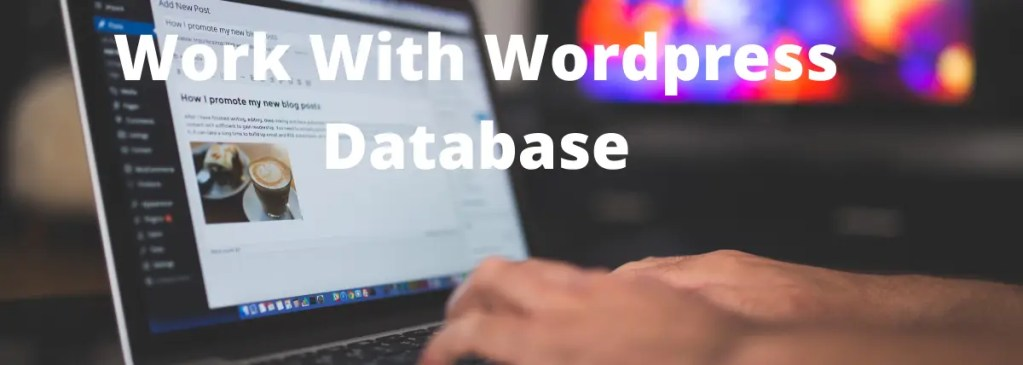 How to work with wordpress database using SQL query?