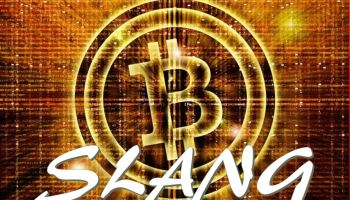 Cryptocurrency Slang - Tech Urdu