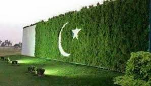Green Pakistan - Pakistan Flag - Tech Urdu