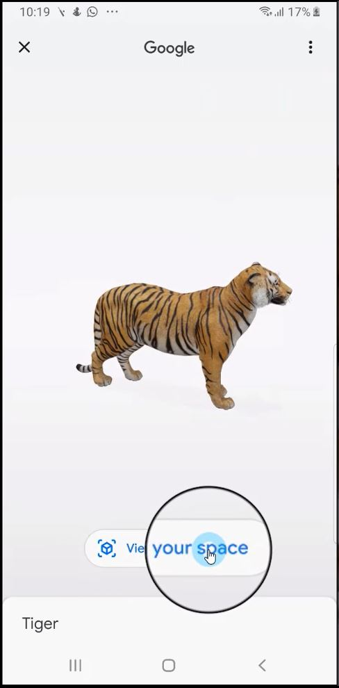 How to Look at Life-Sized Animals in AR Through Google Search? - Tech Urdu