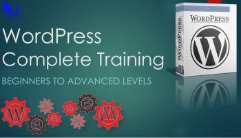 WordPress Complete Training (2020) - techurdu.net