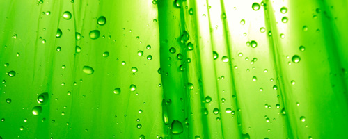 greensimplicity