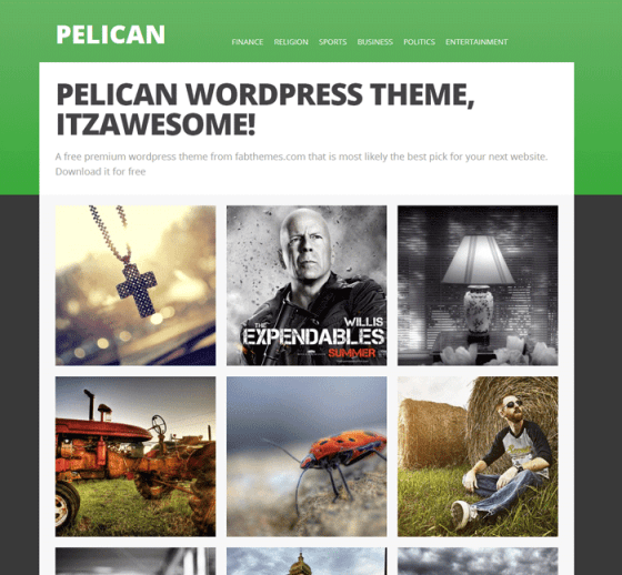 pelican---Just-another-demo-Sites-site
