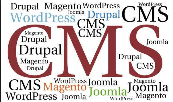 CMS-Wordpress Terminology