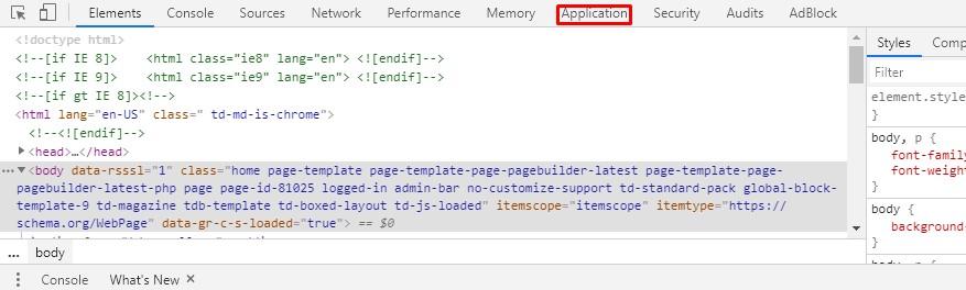 Select the 'Application' pane.