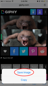 How to Save the Gif