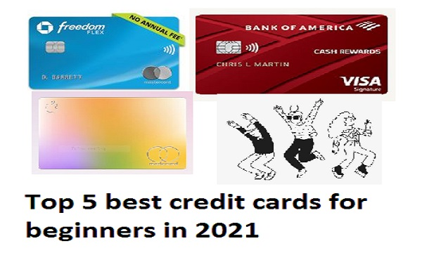 Top 5 best credit cards for beginners in 2021