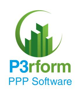 P3 performance reporting