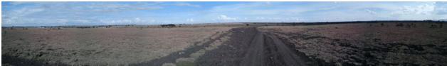 Panoramic Photo of Kajiado Plains Taken using Samsung Smartphone Camera