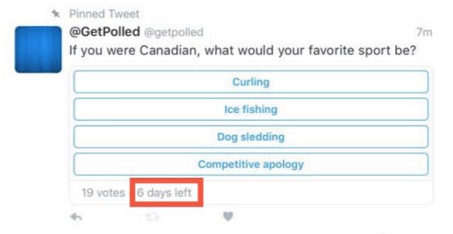 screenshot twitter poll