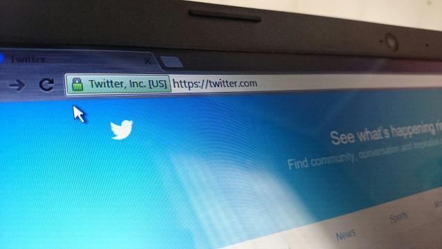 Twitter web