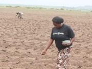 Farmcrowdy GMSA Grant