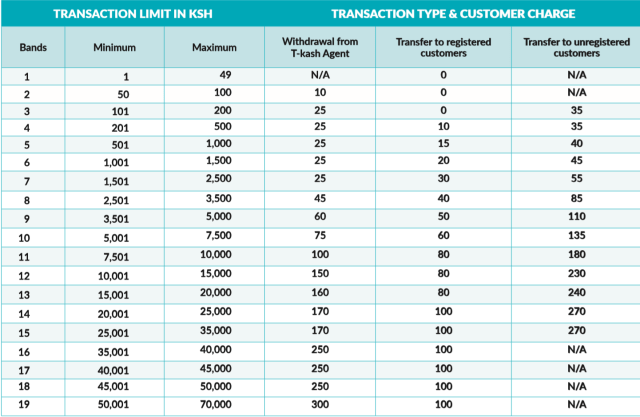 T kash Transaction Fees