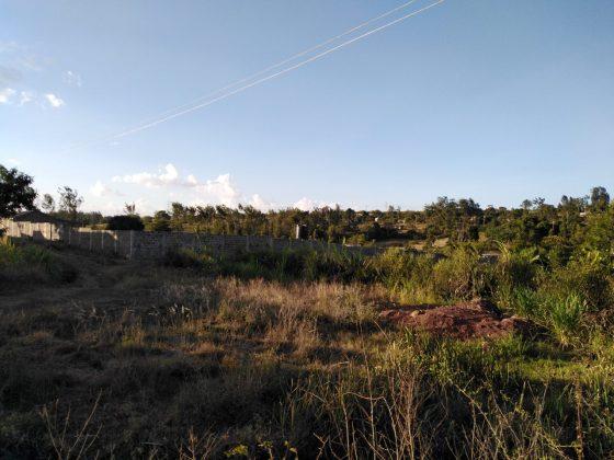 landscape shot on the Huawei Y7 Prime 2019