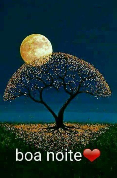 Boa noite, florido