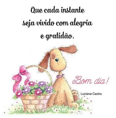 Bom dia. Que cada instante seja vivido com alegria e gratidão.