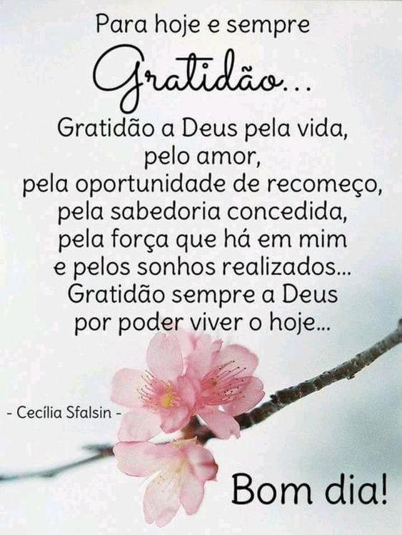 Para hoje e sempre gratidão