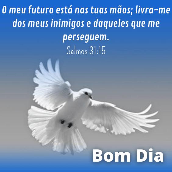 Salmo sobre futuro