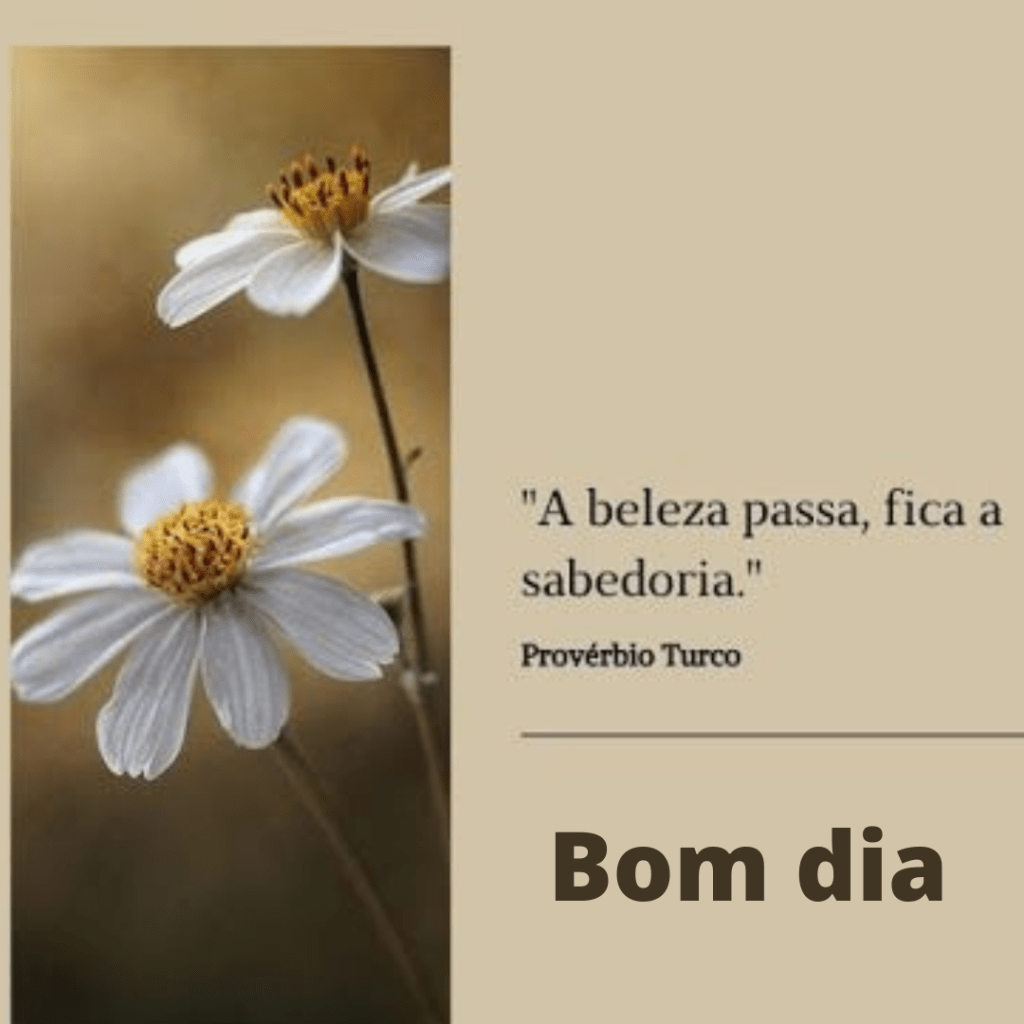 Bom dia florido