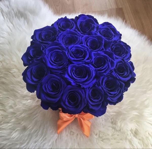 um azul encantador